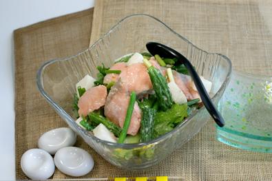 夏野菜と銀鮭サラダ