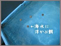 resipi_090604-5.jpg
